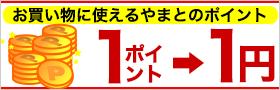 1Point1円