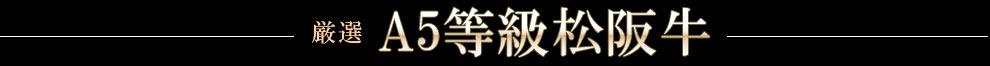 A5等級松阪牛
