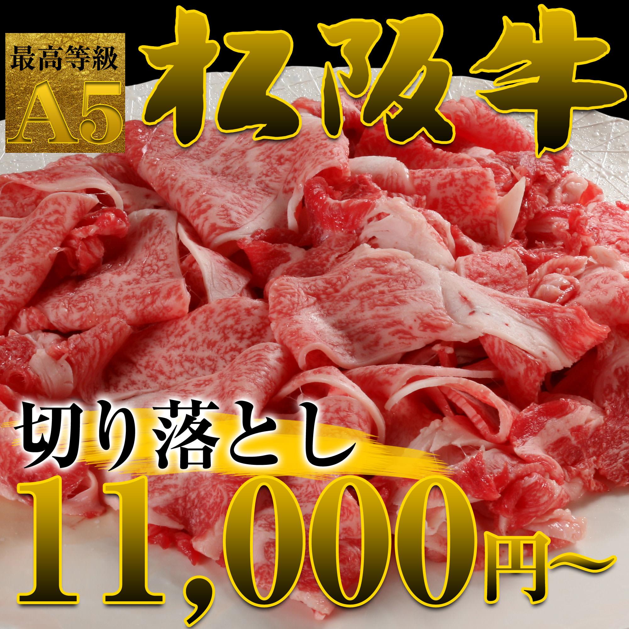 松阪牛切り落とし 500g(4〜6人前)